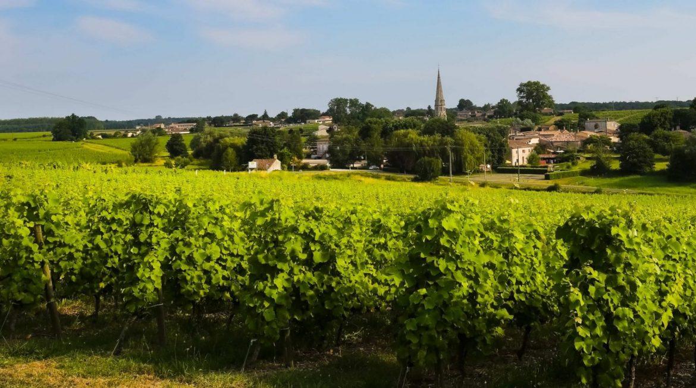couv-route-des-vins-de-bordeaux-en-graves-et-sauternes-village-de-sauternes-Copie-e1487166834978.jpg